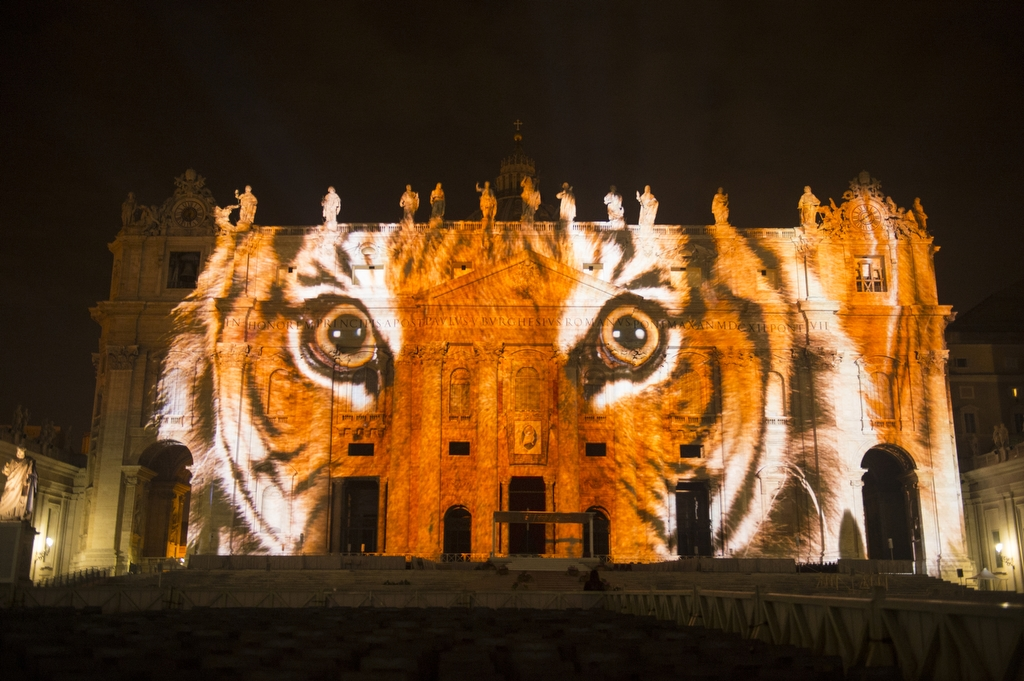 A Sumatran tiger is projected onto the Vatican in an effort to raise awareness for the extinction crisis.